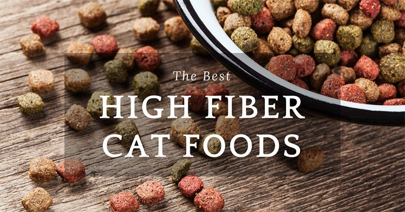 high fiber cat foods