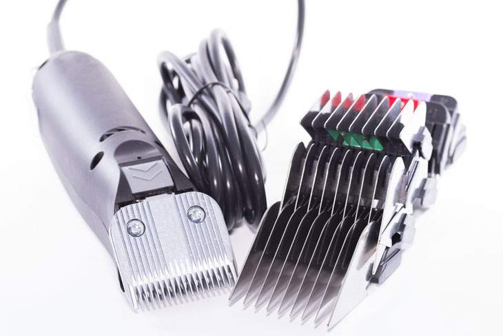 best dog clippers for poodles